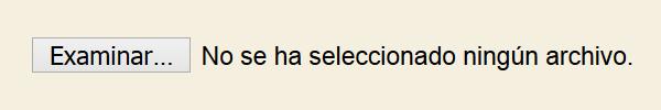 Captura de pantalla de un campo de subida de archivos. Se ven las etiqueta de texto «Examinar...» y «No se ha seleccionado ningún archivo».